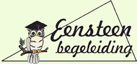 eensteen-begeleiding-huiswerkbegeleiding-aalten-logo